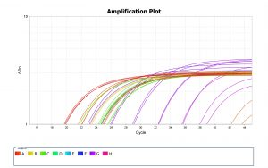 amplification-plot